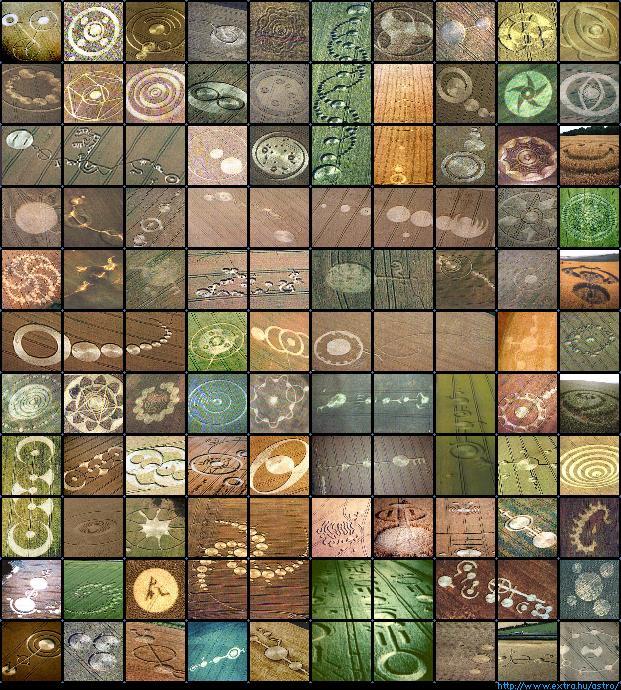 Crop Circles et Ovnis messages ou arnaques? - Page 5 Zcrop