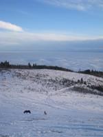 Location de chalet en montagne